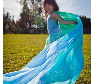 sarah silk