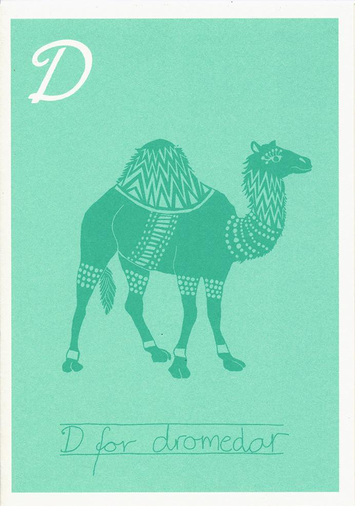 D for dromedar