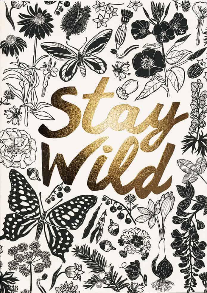 Stay wild - postkort