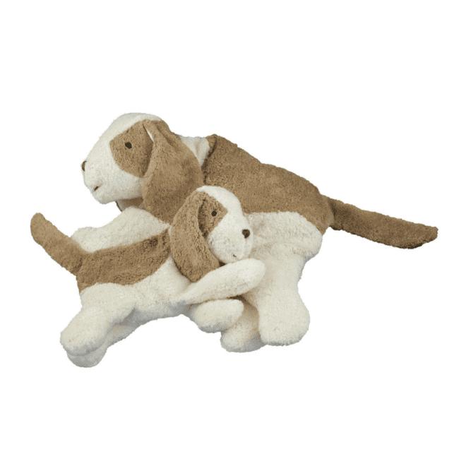 økologisk bamse hund